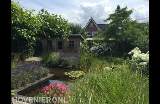Natuurlijke tuin met vijver 2