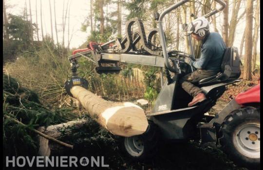 Gekapte boom afvoeren