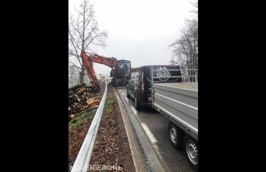 Bomen kappen langs provinciale weg 2