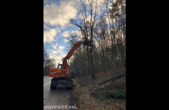 Bomen kappen langs provinciale weg 3
